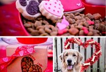 valentine's day animal DIYs. / Make a Valentines gift from the heart for your pet.