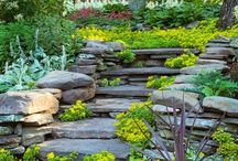 Landscaping A Slope / Sometimes it is hard to figure out what to do with that slope in your backyard. We're here to give you a few ideas!