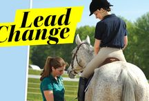 Horse Industry News