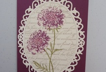 SU: Field Flowers