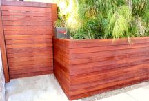 back yard - boxes - fences