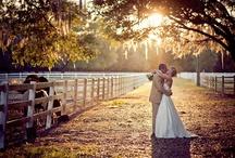 Wedding ideas / by Kari Holston