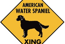 American Water Spaniel Signs and Pictures / Warning and Caution American Water Spaniel and Pictures. https://www.signswithanattitude.com/american-water-spaniel-signs.html