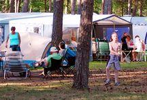 Vakantiepark Arnhem / Het mooiste plekje op de Veluwe...  De troefkaart van de Oostappen Groep Vakantieparken: Oostappen Vakantiepark Arnhem op de Veluwe. Deze parel op de Veluwe is een vakantieplek die u echt moet ontdekken. Middenin in de bossen liggen de ruime chalets en kampeerplaatsen. Alleen al de heerlijke geur van de naals en loofbossen brengt u in ontspannen modus. Het zwembad, dat een dak heeft dat bij mooi weer ook open kan, is het gezellige middelpunt van dit mooie park.
