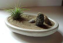 bonsai design