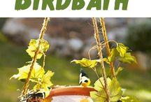 Vogelhäuser  und Wasserstelle