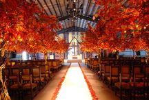 Wedding Season: Autumn