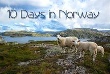 Scandinavian Road Trip