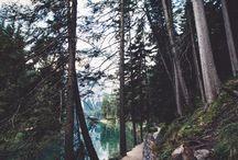 ~~~> Beautiful Views <~~~