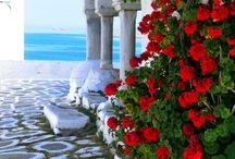 VISUAL HEALING GREEK2M