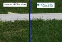 Lawn fertilizer with organics