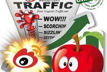 Social Web Traffic