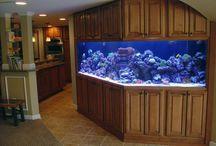 Custome Home Aquariums