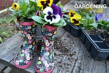 Donna's Plexus Power Gardening / Gardening Ideas in Between Plexus :D / by Donna's Plexus Power