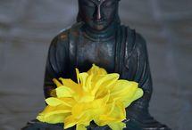 Zen, soyons zen.... / L'approche du zen consiste à vivre dans le présent, dans l' ici et le maintenant, sans espoir ni crainte