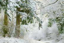 Winter !!!