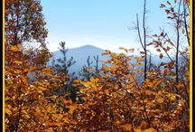 Land available in Wilkes County, NC