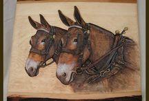 reljef konie