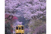 Photography of beautiful WORLD