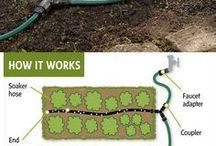 Irrigation ideas