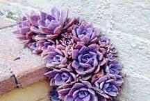 Teñir flores