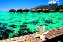 Tropical paradis