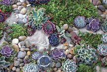 Ideas to decorate your garden with stones and rocks