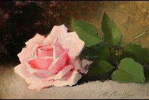 Single flower paintings