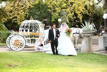 Fairytale Wedding / Vive una boda de cuento. #Wedding  #Disney #Boda #Sueño #Amor #cuento #fairytale