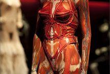 ART fashion  / De kleding is mooi, maar het is alleen wel erg jammer dat sommige modellen broodmager ( moeten) zijn.