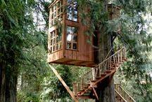 Case e alberi / Houses and trees