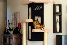 Mačací nábytok