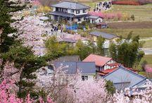Fukushima / Fukushima