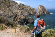Along the Costa Vicentina / To explore a truly wild coastal landscape, choose this gentle yet spectacular walking holiday which reveals the haunting beauty of Portugal's south-western coastline. Here, on the little-known Costa Vicentina – Europe's largest coastal natural park – virgin beaches backed by dunes and dramatic cliffs are washed by a restless sea. http://po.st/jc9knb