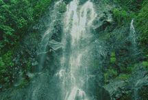 Photowork / Landscape,natural,leaf,abstract,surealism,go green