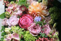 NWD kwiaty