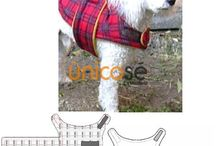 Koiran vaatteita