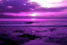 Red and purple / Inspiroivia kuvia punaisesta ja violetista