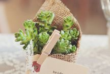 Do Me a Favor... / Discover a variety of favors for your wedding or special event.