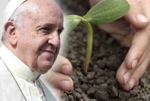 Laudato Si: Papal Encyclical on the Environment / A collection of articles and reactions on Pope Francis' Environmental Encyclical. As we reflect on his words, let our actions make a healthier earth for all.