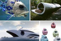 Biomimcry Design