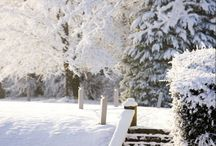 Christmas / Leave behind the chaos associated with the hustle and bustle of Christmas and New Year and discover a world of peace and serenity at Farnham Estate.  Treat yourself to a wonderful festive break at the Radisson Blu Farnham Estate Hotel in Cavan