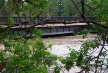 2013 Alberta Flood