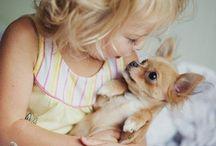 Niños, perros, gatos y otros
