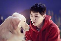 SONG JOONGKI VIVO