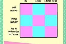 5/6 Math / Math for 5 & 6 / by Harmony Skillman