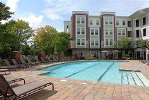 Atlanta apartments for rent / The best apartments to rent in Atlanta, GA!
