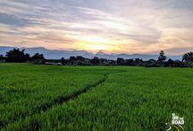 Tamil Nadu, Incredible India Travel Photos