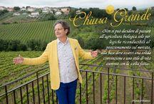 """Vinosofia / Un vino veramente grande non viene solo prodotto: viene ideato. Un vino degno di nota non è da assaggiare, bensì da """"amare sciaguratamente"""".  www.chiusagrande.it"""