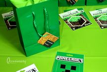Minecraft Birthday Party Theme